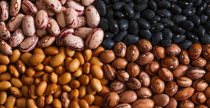 20160106 beans vicky wasik 1 - Discover 7 Foods That Will Make You Look Younger