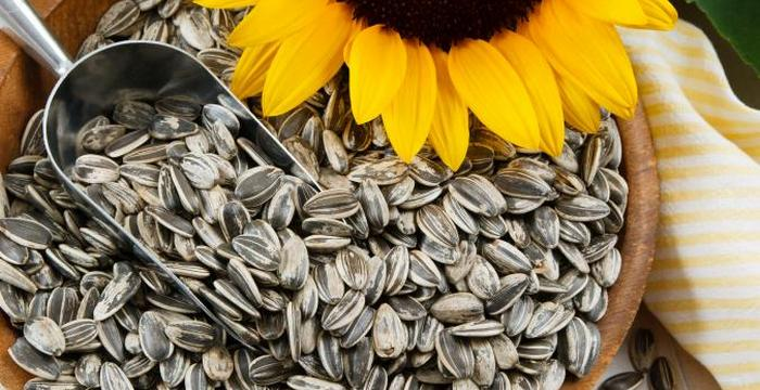 201986 675x450 sunflower seeds - Discover 7 Foods That Will Make You Look Younger